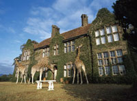 Giraffes outside house in countryside
