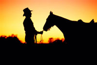 Silhouetted cowboy and horse,Australia