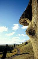 Moai at Rano Raraku quarry