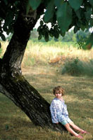 Young girl sitting in walnut tree