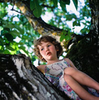 Young girl sitting in walnut tree.