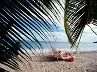 Grande Anse Beach 20023004291| 写真素材・ストックフォト・画像・イラスト素材|アマナイメージズ
