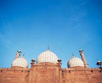 Walls,domes and minarets of Jama Masjid