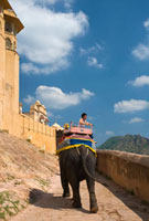 Tourist on elephant going up path at Amber Fort