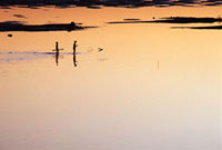 Two boys walking along the Mekong river bank at sunset