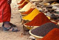 Person standing with spices,Close Up