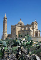 Ta Pinu Basilica and cacti