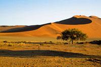 Desert landscape in Sossusvlei