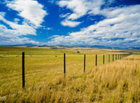 Fence across fields