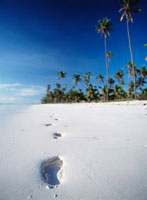 Footprints on the beach near Paje on the East coast of Zanzi