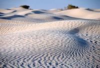 Sand dunes in Sahara desert near Douz