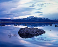 Reflection in Mono Lake.