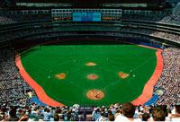 The Skydome Toronto