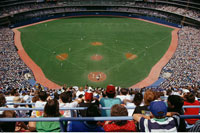 Baseball Game at the Skydome Toronto