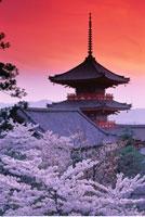 Kiyomizu Temple and Pagoda Kyoto