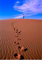 Back View of Woman Walking in Desert Merzouga Dunes