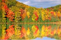 Claypack Lake in Autumn Haliburton