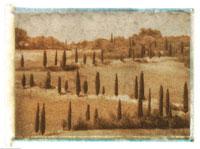 Cypress Trees Near Pienza 20025028059| 写真素材・ストックフォト・画像・イラスト素材|アマナイメージズ