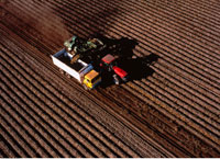 Aerial View of Potato Harvest Carberry