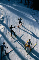 Overhead View of Cross Country Ski Racing