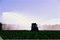 Potato Field Irrigation Near Grandview