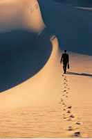 Back View of Businessman Walking In Desert Death Valley