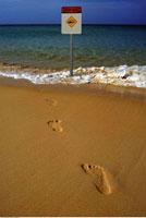 Footprints on Beach near Shark Warning Sign