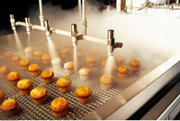 Quick Freezing of Muffins at Commercial Bakery