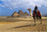 Man on Camel Giza