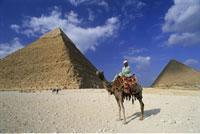 Man on Camel Giza