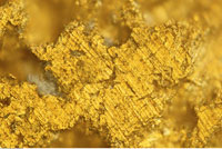Micro Image of Gold