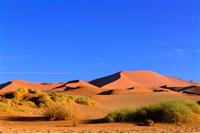 Sand Dunes Namib Desert Namibia Africa