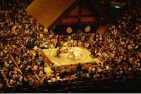 Sumo Wrestling Competiton