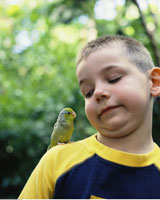 Portrait of Boy With Lovebird