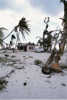 Aftermath from Hurricane Ivan