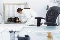 Veterinarian Kneeling by Dog