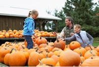 Family Choosing Pumpkin