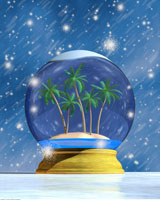 Snow Globe With Palm Trees