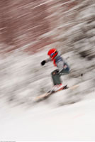 Skier in Motion