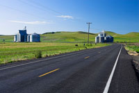 Rural Road and Silos