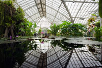 Botanical Garden, Golden Gate