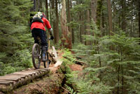 Man Off-Road Mountain Biking,