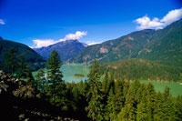 Skagit River, North Cascades,National Park, Washington, USA