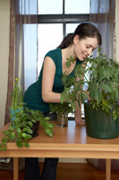 Woman Tending to Plants