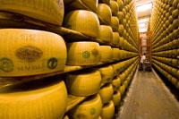 Parmesan Cheese Aging in Storage,Reggio nell'Emilia, Italy