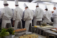 Chefs Lined up at Counter
