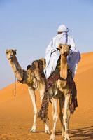 Tuareg Person