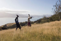 Couple Doing Handstands in Field