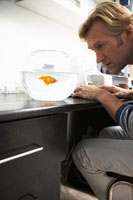 Man Looking at Goldfish