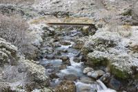 Bridge Over Stream in Winter,Arthur's Pass, New Zealand